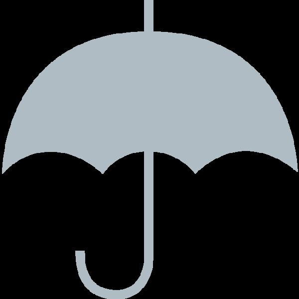 Icon-Non-porous