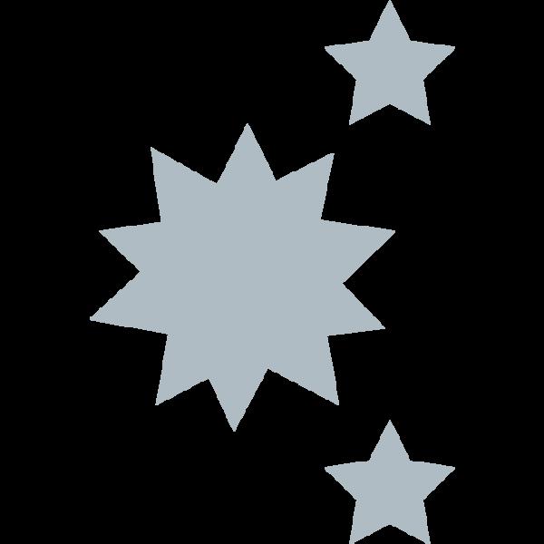Fenix-Icon-Hygienic
